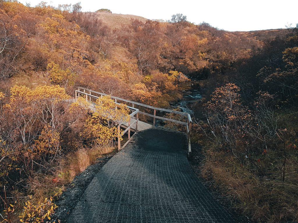 Randonnée dans le parc Skaftafell