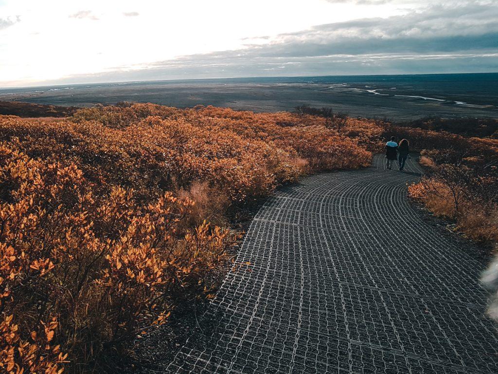 Randonnée dans le Skaftafell