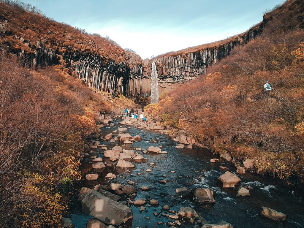 Cascade de Svartifoss dans le parc de Skaftafell